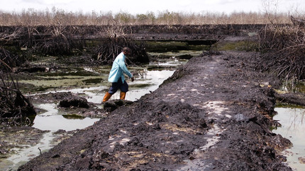 Pastor Christian Lekoya Kpandei walks through his ruined fish farm in Bodo, Nigeria, May 2011. The farm flourished before the August 2008 oil spill, but the pollution destroyed his fish farm, leaving him and his workers without a regular income.  (PHOTO: Amnesty International)