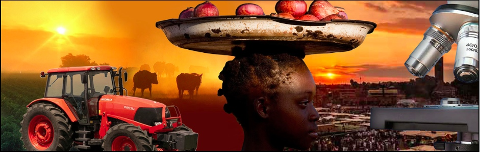 Third Global Conference on Agricultural Research for Development