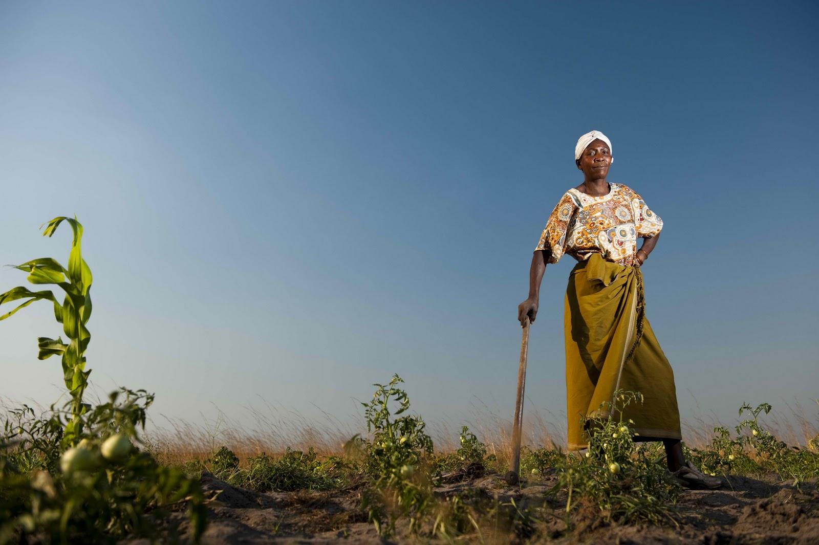 An African woman farmer (PHOTO: africaag.org)