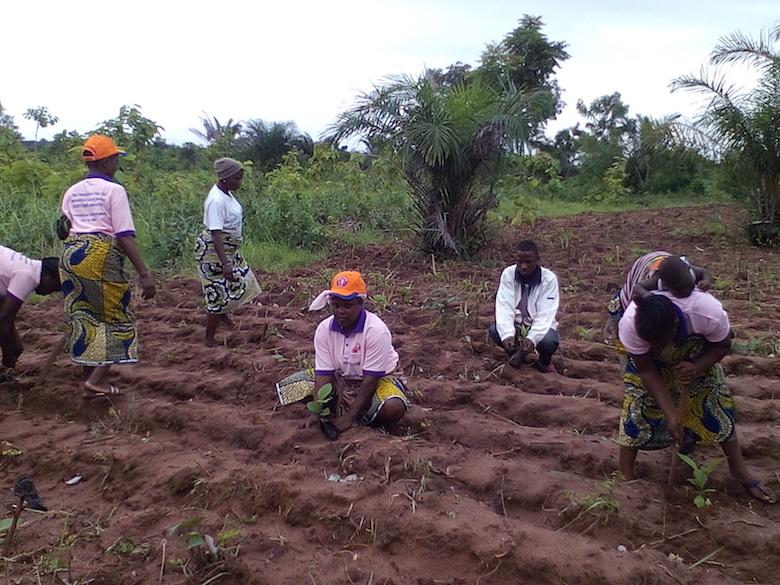 Les femmes entrain de planter et puis les femmes avec leur mécène (PHOTO: Didier Madafime)