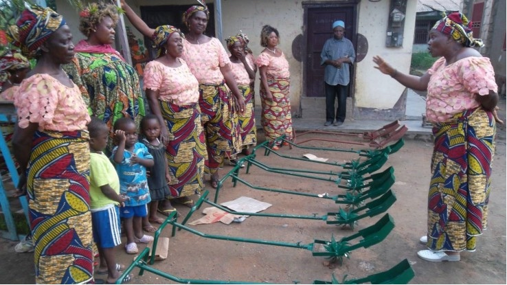 Training women rice farmers on how to use weeders on thier farms in Ndop, Cameroon. (PHOTO: ClimateReporters/Elias Ntungwe)