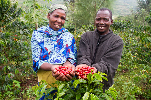 A Fresh Approach for Smallholder Coffee Farmers (PHOTO: Technoserve)