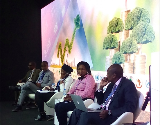 Les participants à ce panel sur le financement du climat