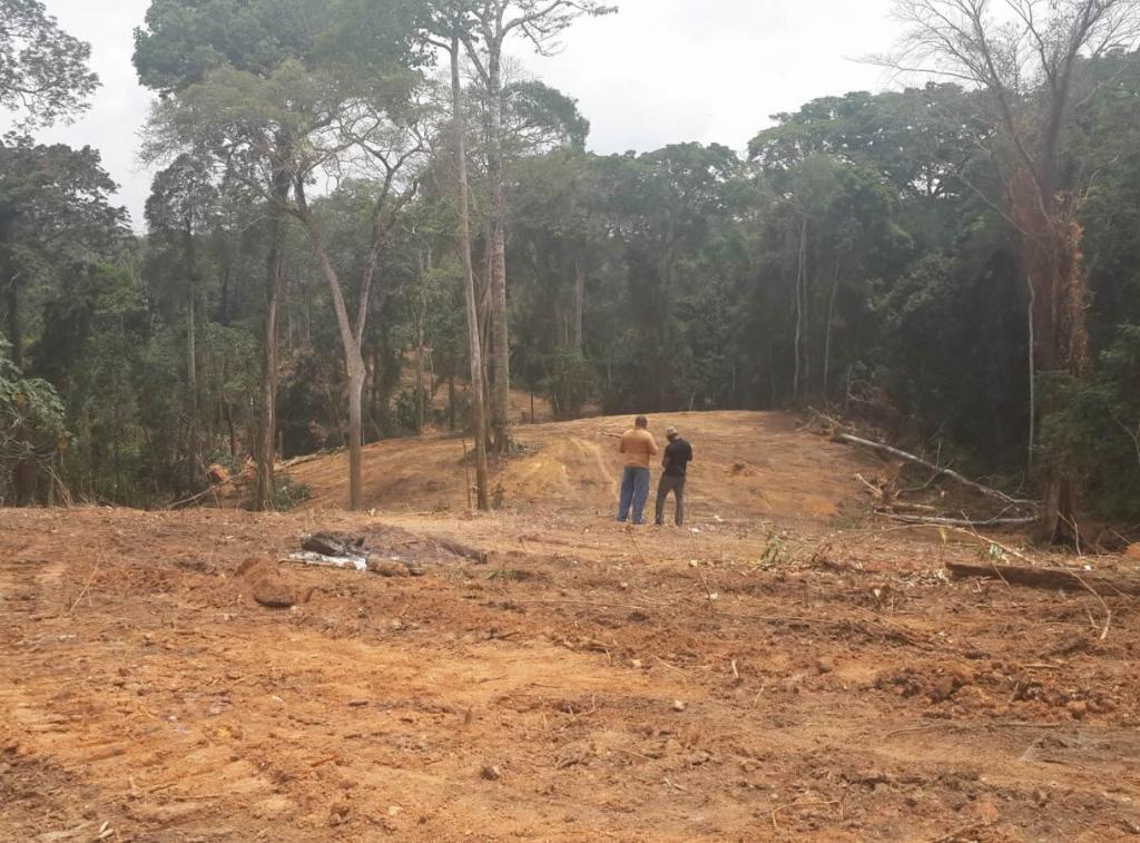 Highway through the forest (PHOTO: Heinrich Boll Stiftung Nigeria)