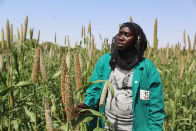 Visite au Centre de recherche au Sénégal